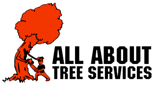 All About Tree Services Gold Coast